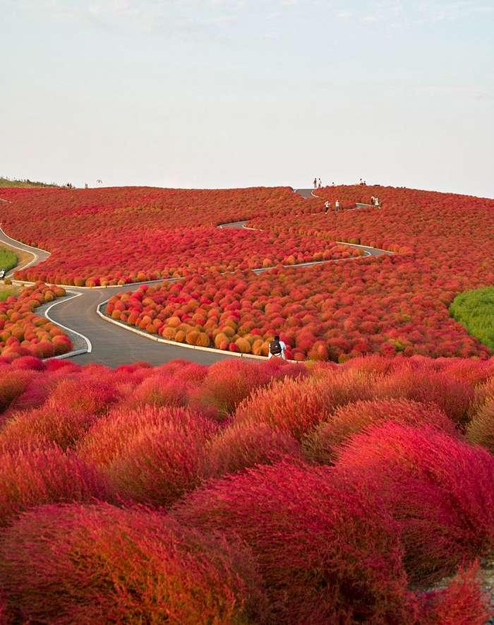 Самые красивые места мира-43 фото-