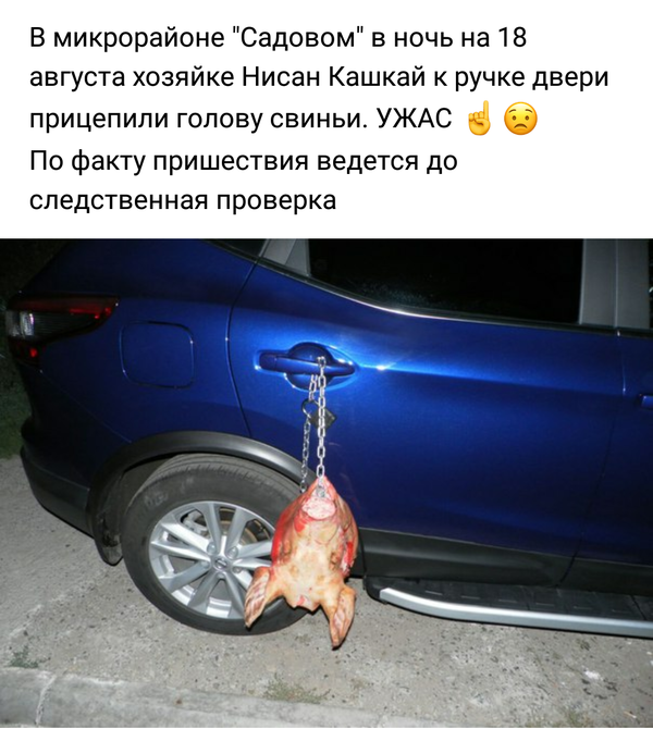 Народная дружина ГИБДД в деле-20 фото-