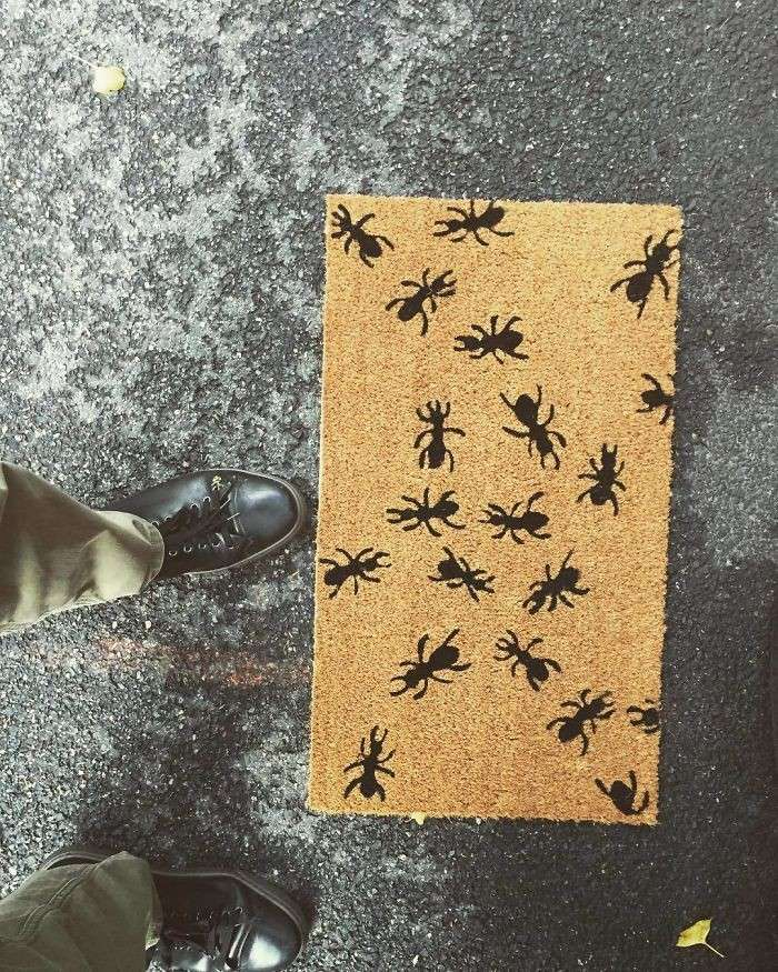 35 самых оригинальных и смешных придверных ковриков-35 фото-