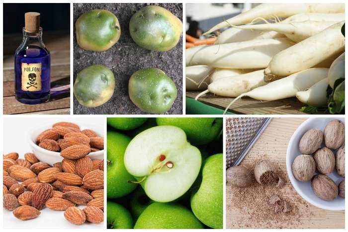 Эти продукты, которые вы видите и едите практически ежедневно - ядовиты-12 фото-