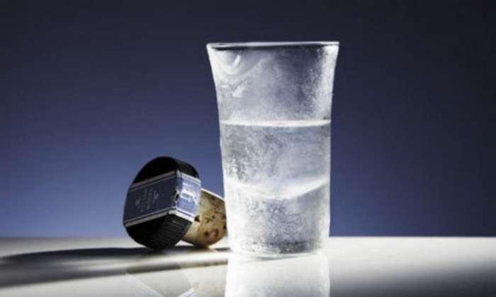 Э, эх...Как правильно пить и закусывать водку-9 фото-