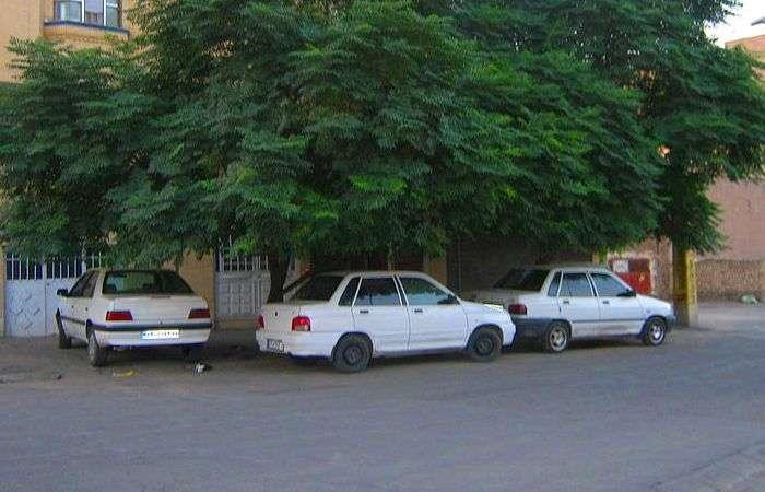 4 горячих факта, которые убедят автомобилистов парковать машину только в тени