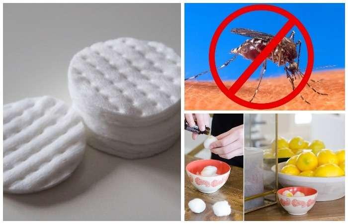 От пятен, вредителей и не только: 8 полезных способов использования ватных дисков