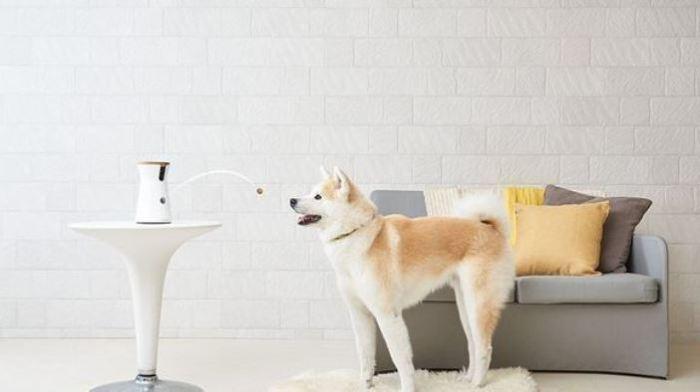10 умных домашних гаджетов, которые сделают жизнь в квартире комфортнеее и безопаснее