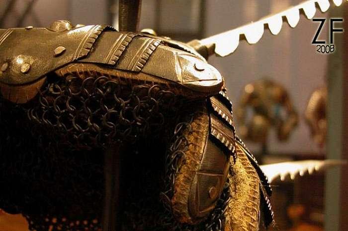 Уникальный щит: рондаш траншейный (7 фото)