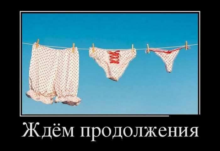 Демотиваторы для настроения 15.08.17 (47 фото)
