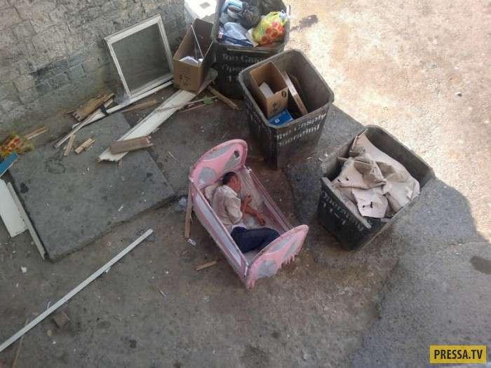 Жизнь бомжацкая у каждого разная (18 фото)