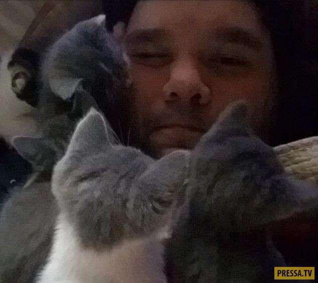 Забавные и милые котики (32 фото)