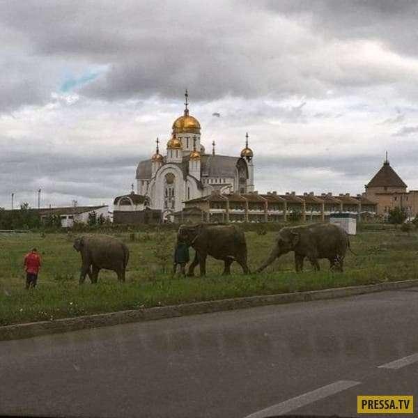 Многообразие России: прикольные фото, передающие особую атмосферу нашей родины! (18 фото)