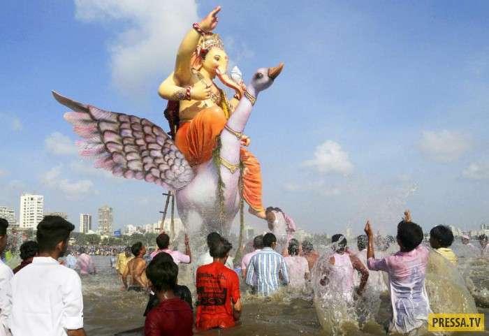 По традиции индусы топят статуи бога Ганеши (21 фото)