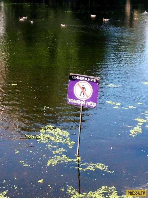 Внимание! Эти предупредительные объявления могут сломать ваш мозг! (15 фото)