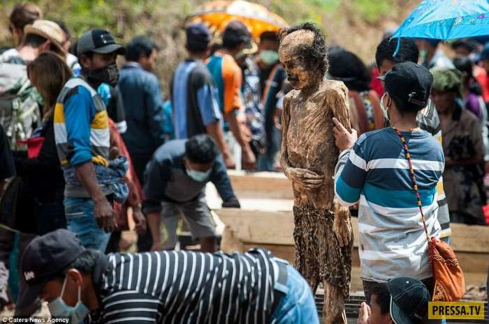 Шокирующий обряд Манене на острове Сулавеси в Индонезии (18 фото)