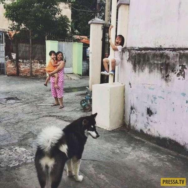 Прикольные фотографии, утренний выпуск (60 фото)