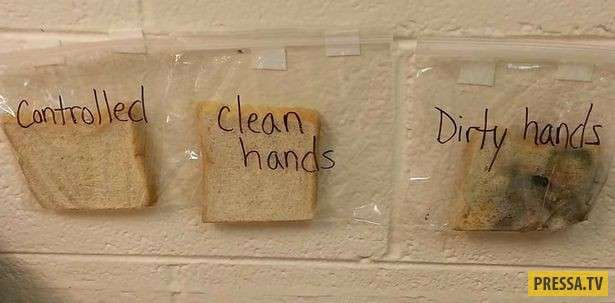 Гениальное решение: Как приучить детей мыть руки перед едой (2 фото)