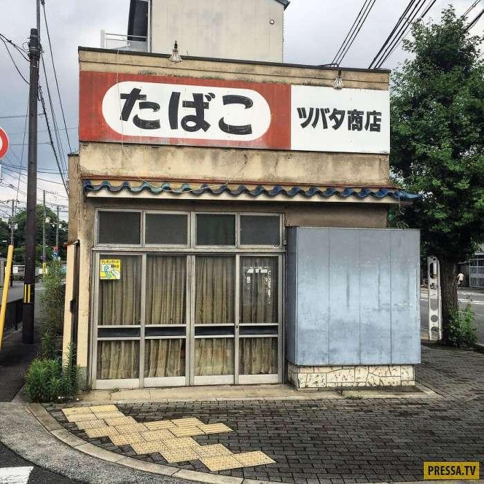 Киото – город небольших зданий (12 фото)