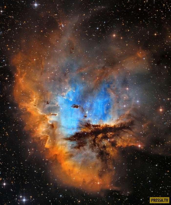 Эти фотографии — просто космос (15 фото)