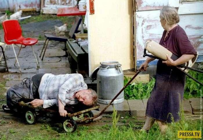 Смешные и забавные фотографии из деревни (40 фото)
