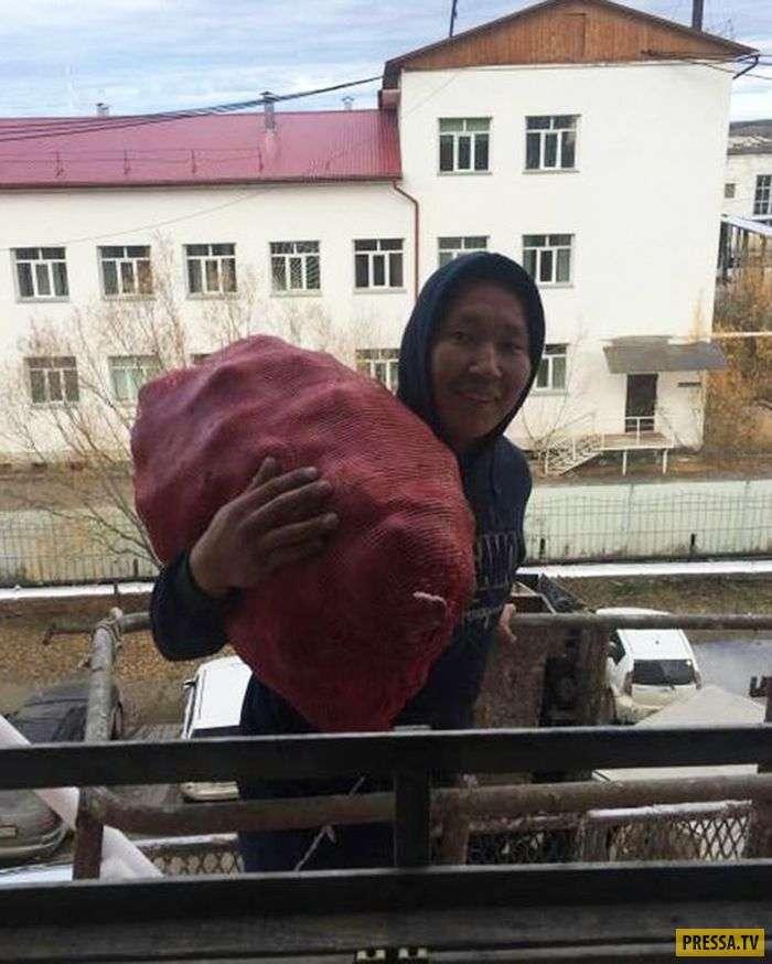 Экстремальная доставка картошки