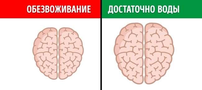 12неожиданных вещей, которые вредят мозгу