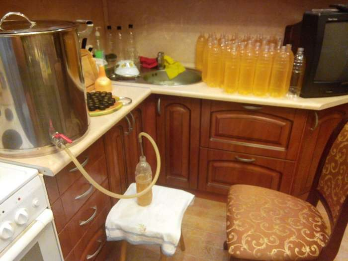 Как сварить пиво в домашних условиях рецепты 504