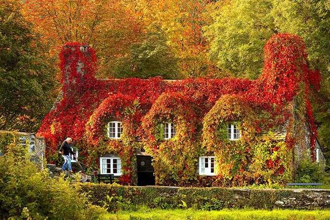 Осенние преображения: пейзажи до и после-24 фото-