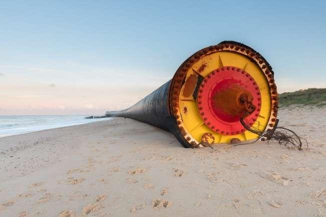 10очень странных вещей, выброшенных морем наберег