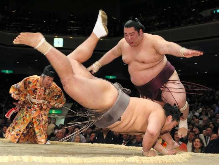 История сумо-10 фото-