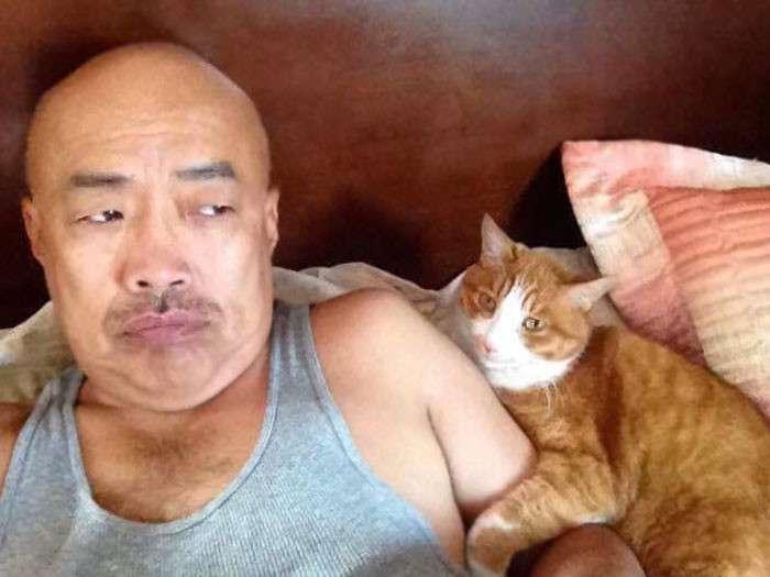Эти люди говорили, что не любят кошек, - и чем все закончилось?-41 фото-