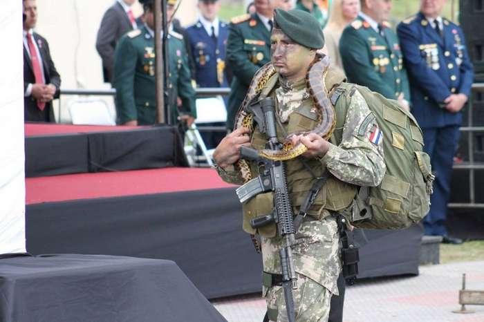 Солдаты армии Парагвая маршируют на параде со своими животными-7 фото-