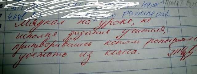 Бред из школьных дневников-105 фото-