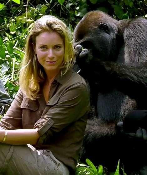 Миллионер-эколог познакомил жену со своей обезьяньей семьей-14 фото-