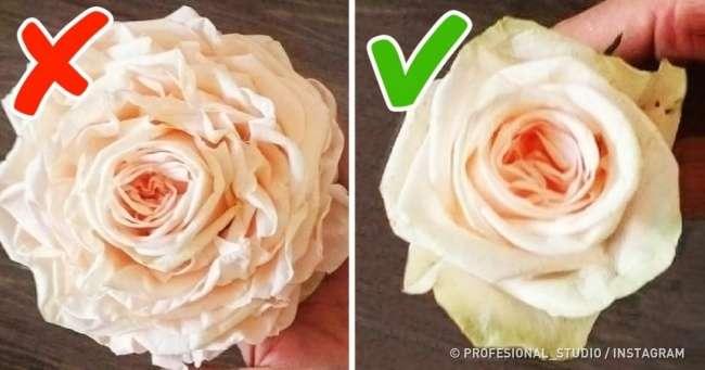 9хитростей, спомощью которых нас обманывают вцветочных магазинах