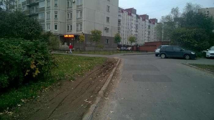 История одного газона в Санкт-Петербурге-12 фото-