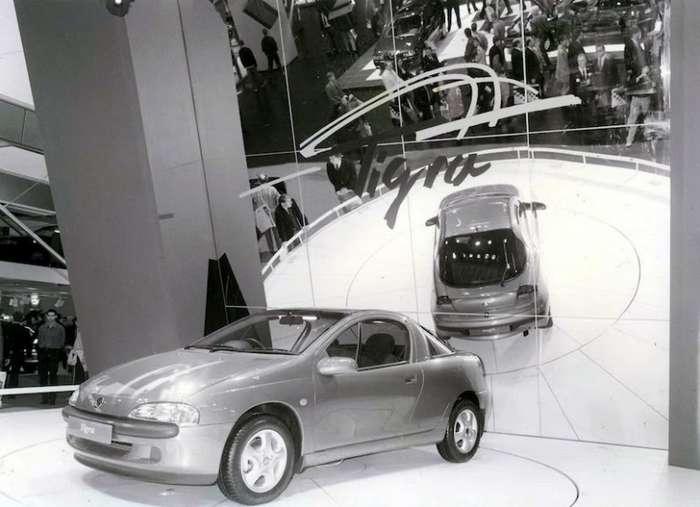 Травоядный Opel Tigra-8 фото-