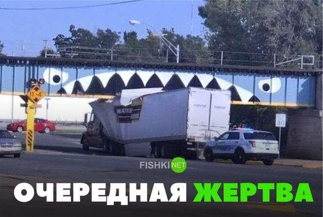 Подборка автомобильных приколов-23 фото-