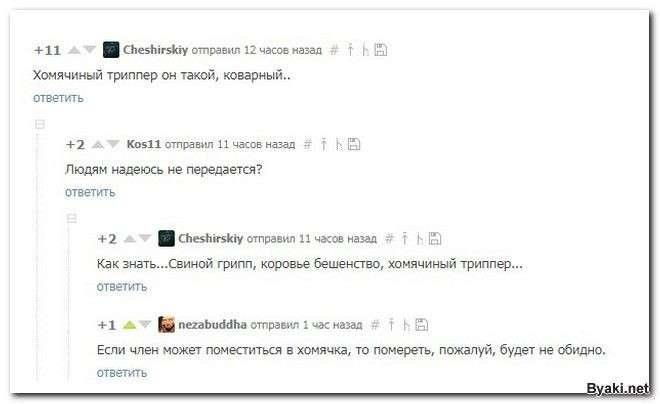 Смешные комментарии из социальных сетей-28 фото-