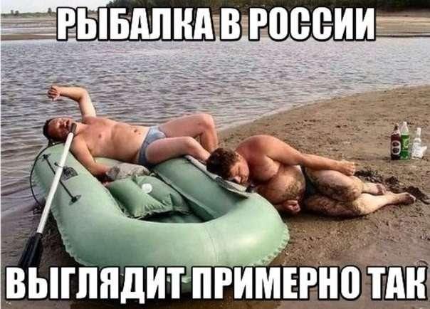 Смешные картинки с надписями-39 фото-