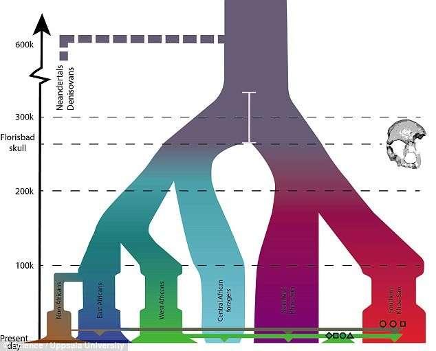 Ученые выявили: Homo sapiens появились раньше, чем считалось-4 фото-