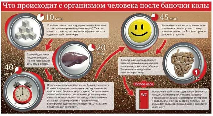 Coca Cola под микроскопом: факты, которые поставят точку в вопросе пить или не пить-4 фото-