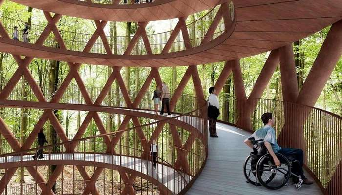 Проект спиральной дорожки между деревьями поможет взглянуть на датский лес с высоты птичьего полета-10 фото-