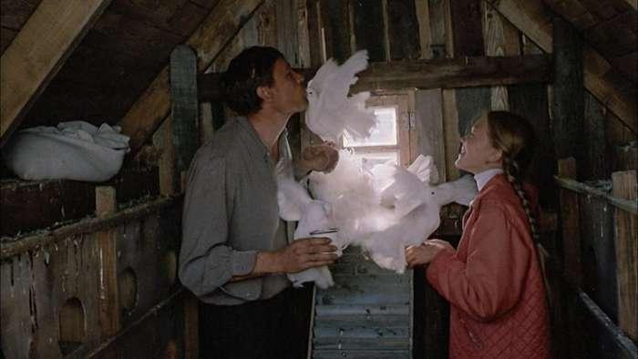 Любопытные факты о фильме -Любовь и голуби-