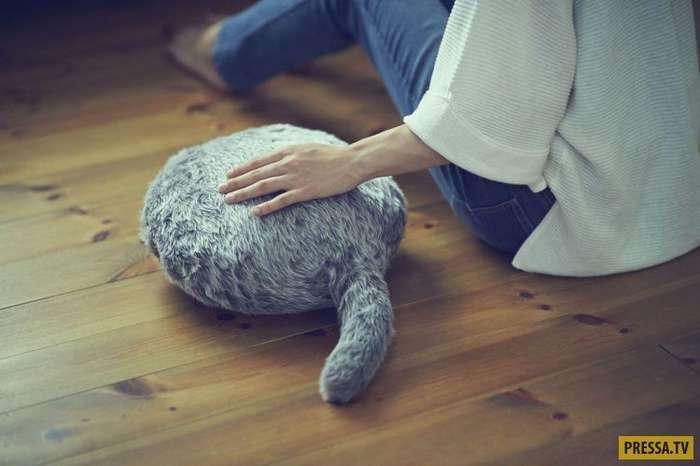 Мурчащая подушка - заменитель кота (4 фото + видео)