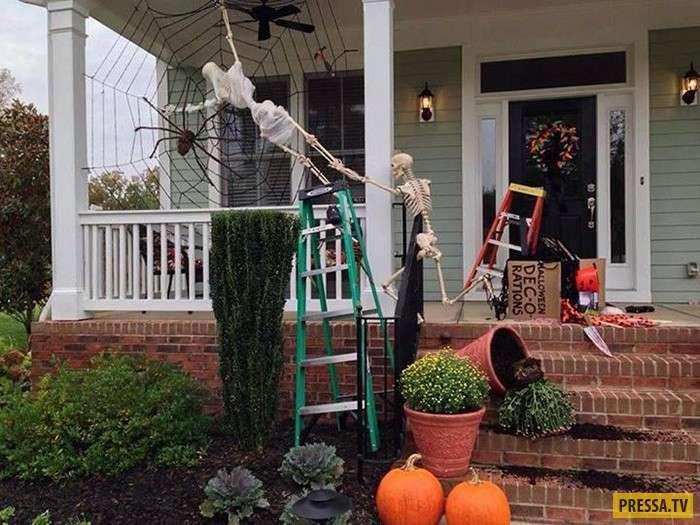 Такие декорации точно испугают Ваших соседей (15 фото)