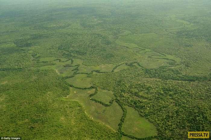 Жизнь простых людей Центрально-Африканской Республики - самой бедной страны мира (20 фото)