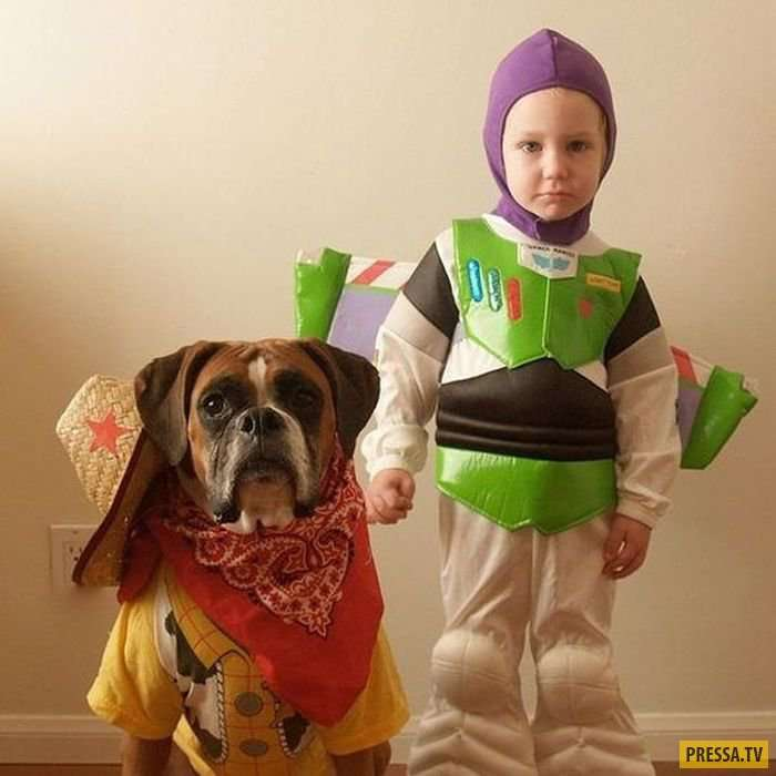 Прикольные костюмы на Хэллоуин для домашних питомцев и их хозяев (21 фото)