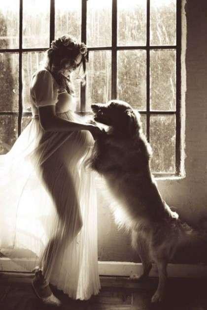 15 невероятно трогательных снимков: собаки ждут пополнения в семье