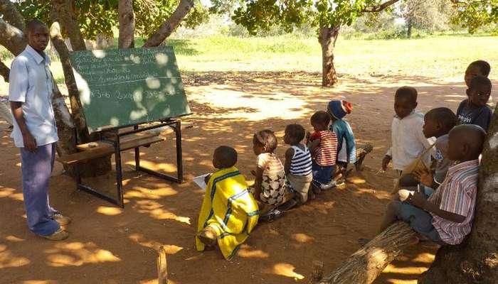 Как устроена система образования в различных странах мира-13 фото-