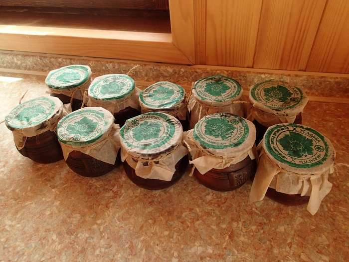 Правила крымских виноделов-19 фото-