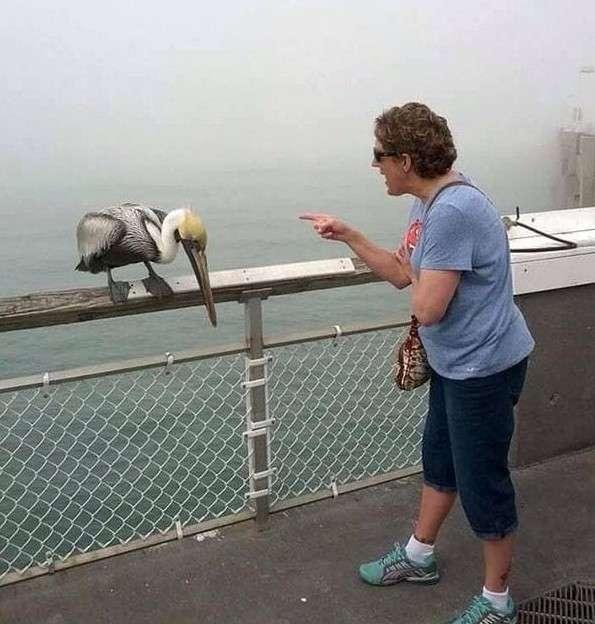17 фото людей, которые не боятся быть белыми воронами-17 фото-