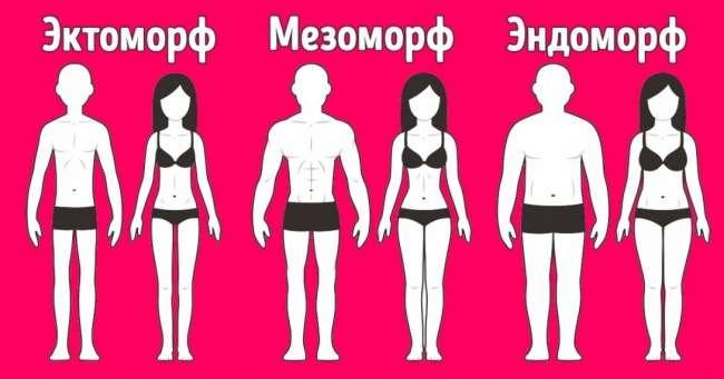 Идеального тела можно достичь, если знать объем запястья и1принцип питания